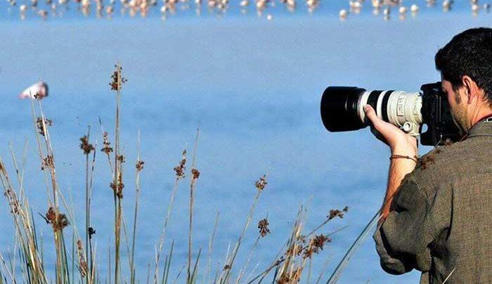 پرنده نگری ظرفیت مغفول گردشگری در کهگیلویه و بویراحمد