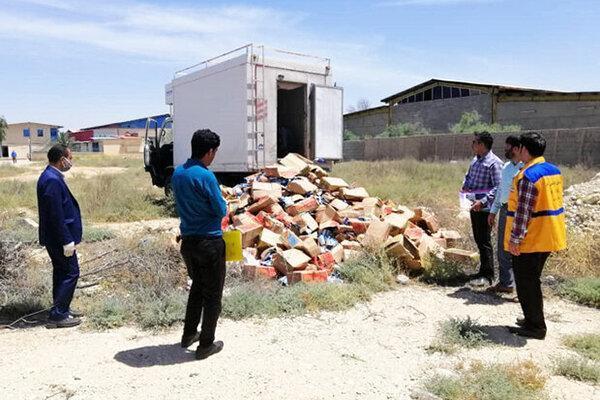 معدوم سازی 8 تن فرآورده دامی فاسد در شهرستان ری