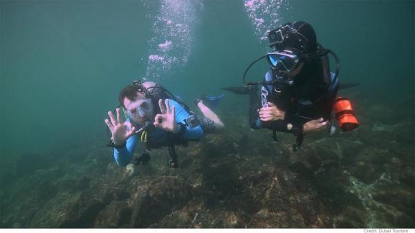 ماجراجویی در دوبی؛ لذت غواصی در میان صخر های مرجانی